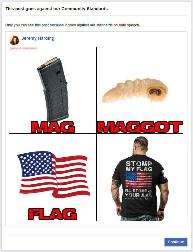 Flaggot Hate Speech