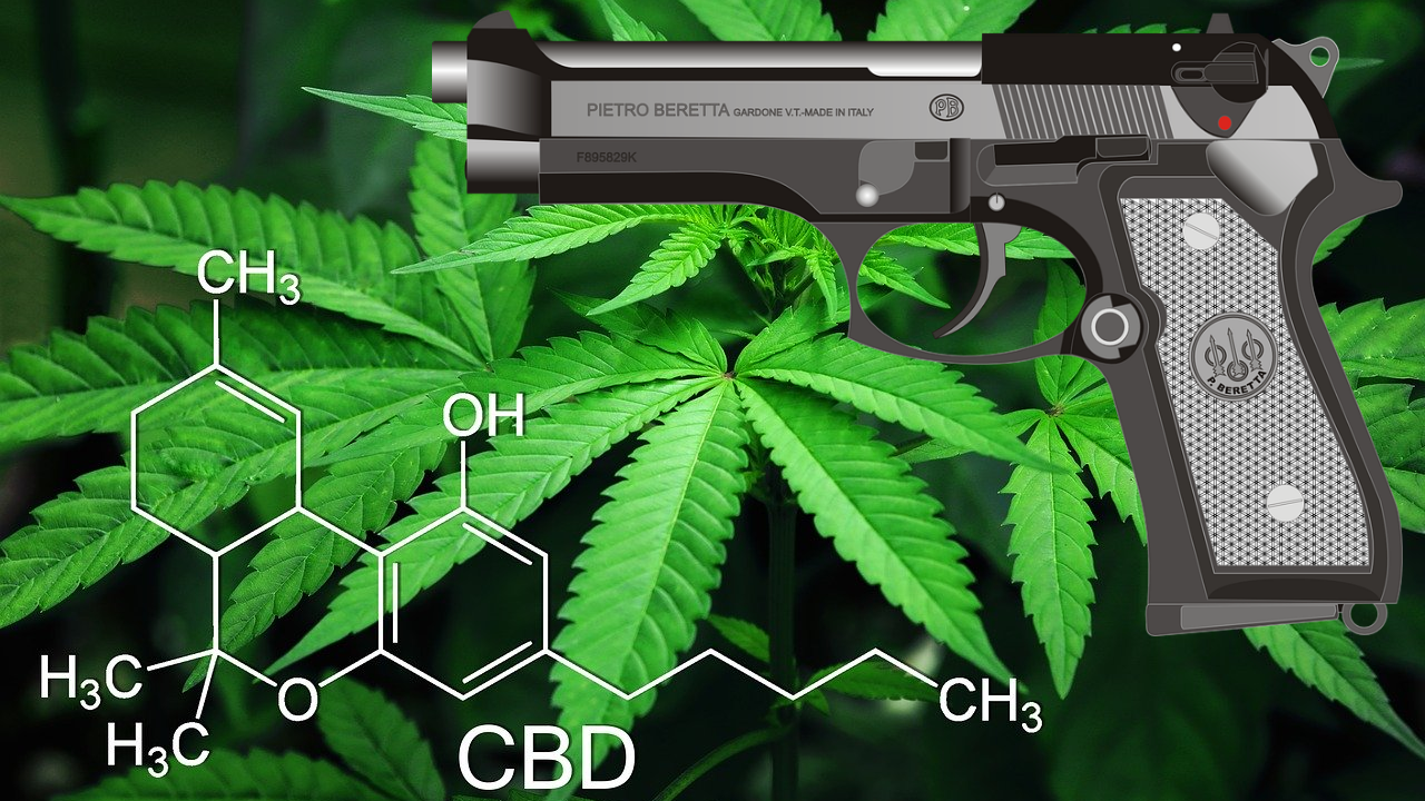 Yes, the state can take your guns if you use weed.
